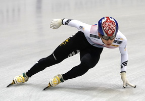 ShortTrack 14311c Korea