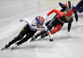 ShortTrack 14427c Korea